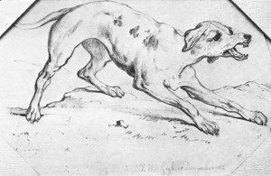 Vincent Van Gogh - Dog